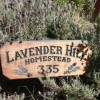 "Bienvenue à ""lavender hill homestead"""